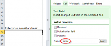 "Screenshot of a text field with the reserved name ""email"""